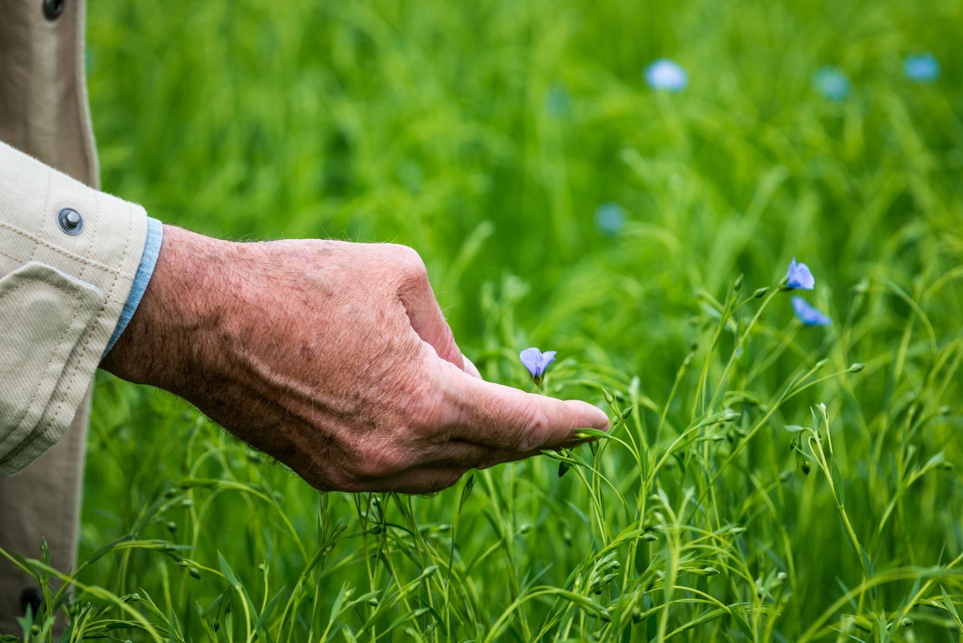 Sustainability - 130614_122000.jpg