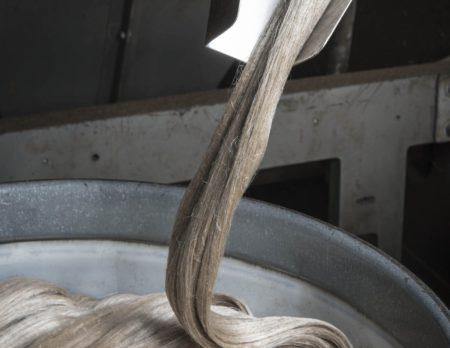 extraire la fibre de lin