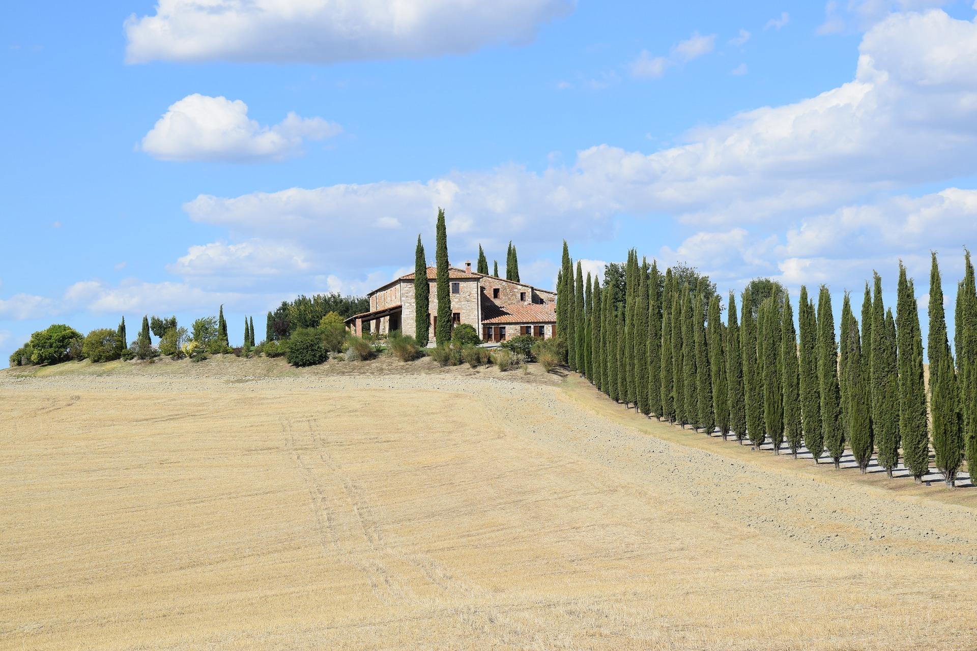 Italy-VillaGilda - cypress-trees-2658940_1920.jpg
